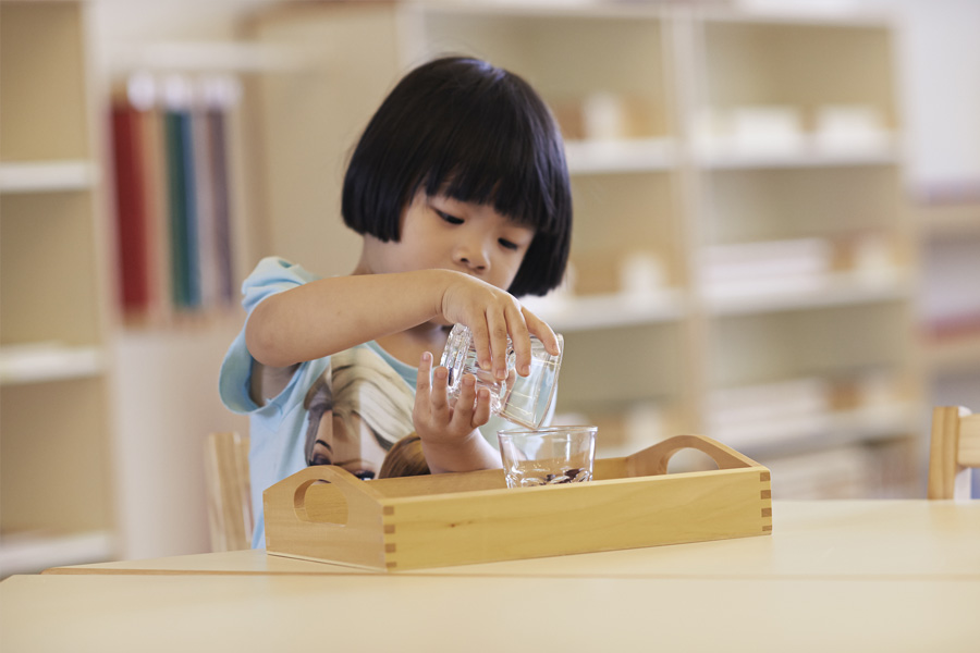 practical life exercises in montessori essay Montessori services, a resource for preparing the child's environment practical life basic exercises practical life extensions.